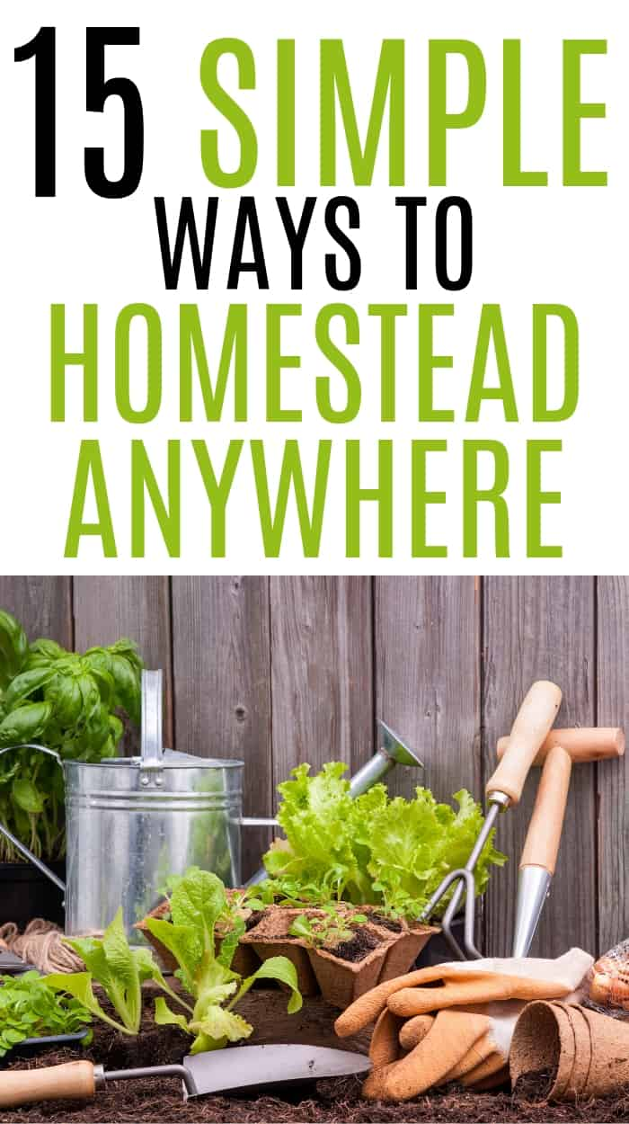 homesteading with kids