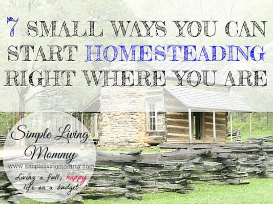 7 Small Ways You Can Start Homesteading Right Where You Are 533x400 slm