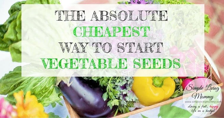 Are you interested in having a garden? Don't spend a ton of money on supplies. This blogger shares her insanely cheap way to start vegetable seeds.