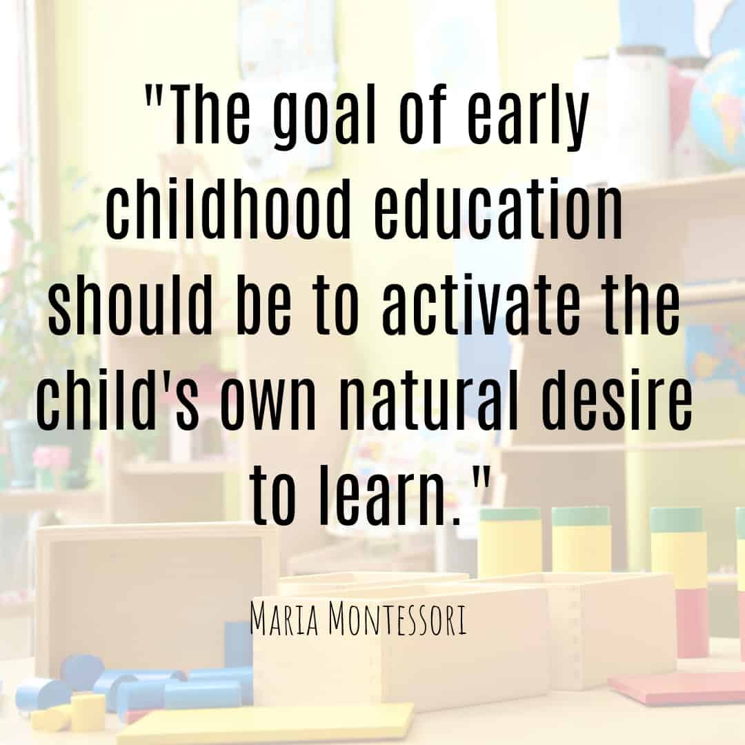 Maria Montessori Quote the goal of early childhood education should be to activate the child's own natural desire to learn.