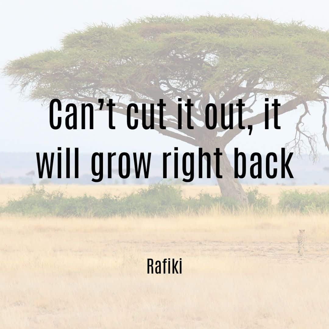 Can't cut it out, it will grow right back Rafiki quote from Lion King