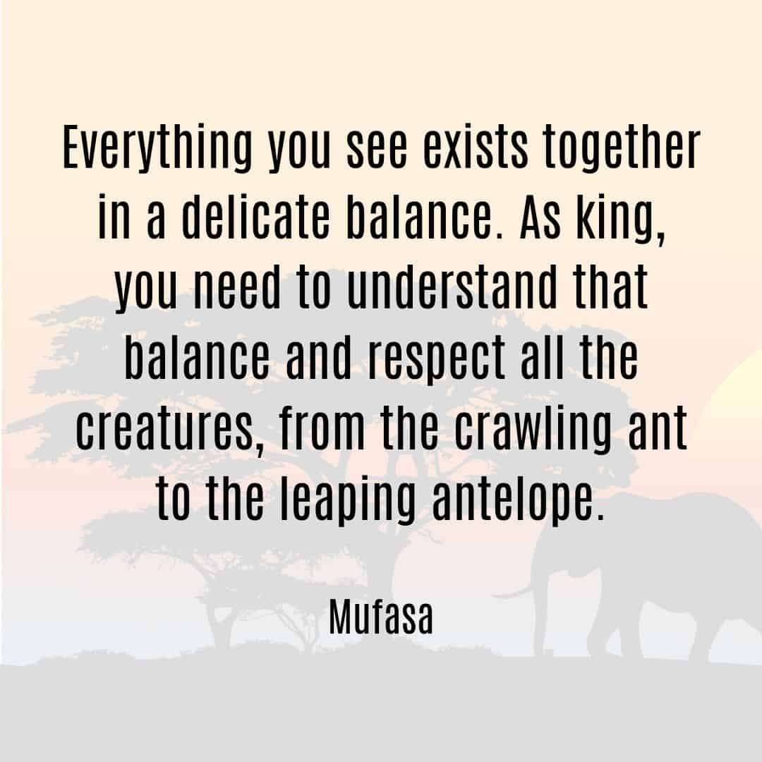 Everything you see exists together in a delicate balance Mufasa quote from Lion King