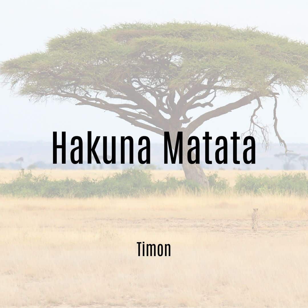 Hakuna Matata Timon Quote Lion King