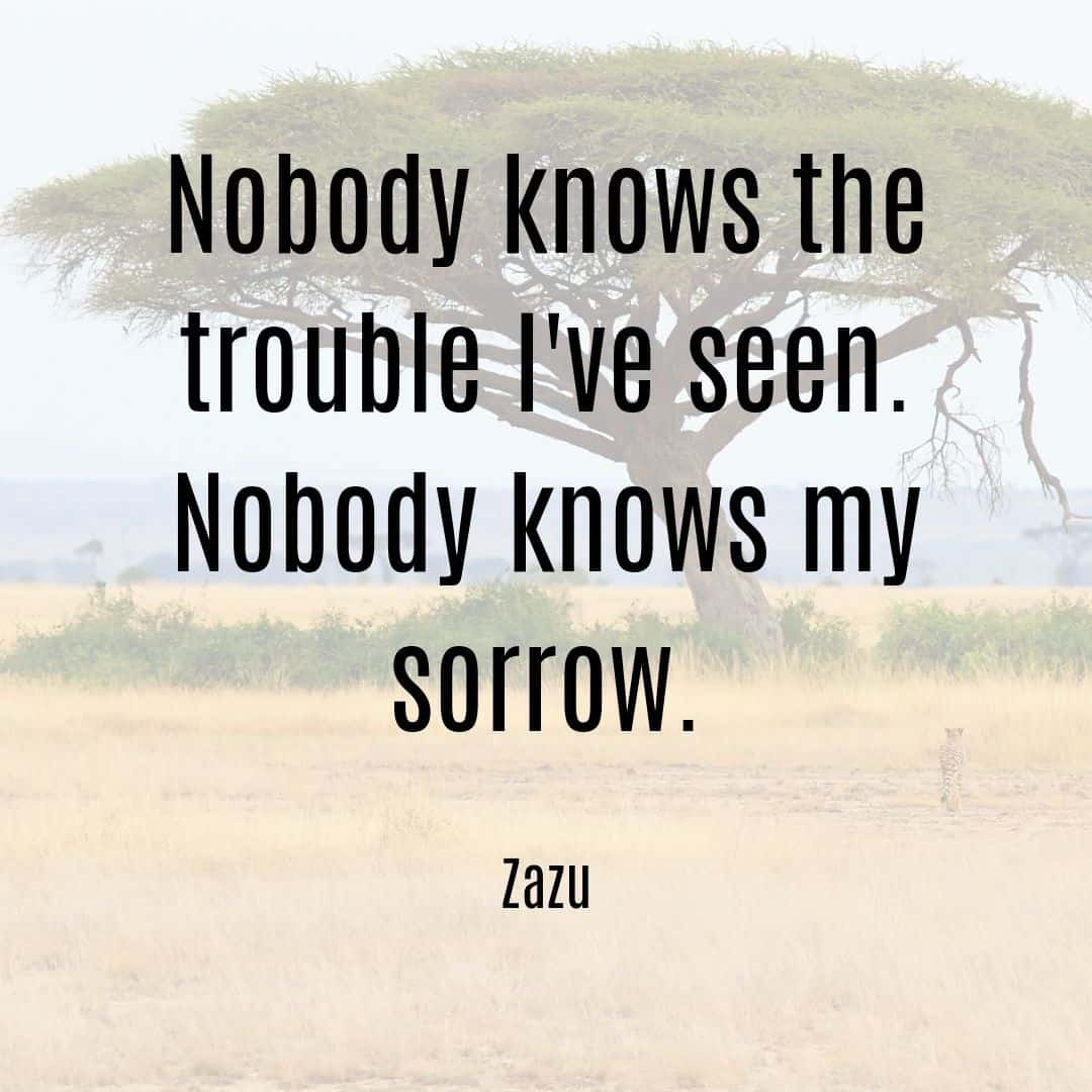 Nobody knows the trouble I've seen. Nobody knows my sorrow. Zazu quote Lion King