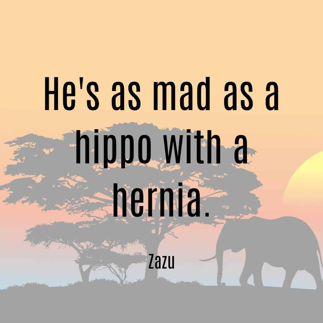 He's as mad as a hippo with a hernia - Zazu quote Lion King